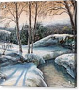 In The Winter In Carpathians.  Acrylic Print