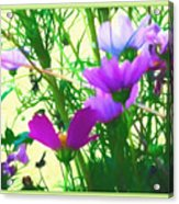 In Time For Summer Acrylic Print
