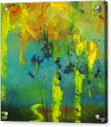 In To Abstract Acrylic Print