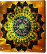 In Tune Mandala Acrylic Print