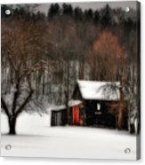 In Winter Acrylic Print