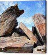 Indian Canyon Rocks Acrylic Print