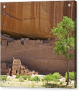 Indian Cliff Dwellings Acrylic Print by Thom Gourley/Flatbread Images, LLC