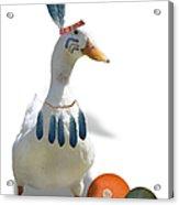 Indian Duck Acrylic Print