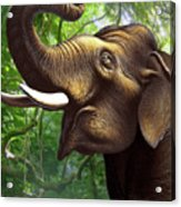 Indian Elephant 1 Acrylic Print