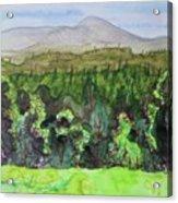 Bullhead Mountain, Indian Lake Overlook Panorama 3 Acrylic Print