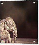 Indian Silver Elephant Acrylic Print