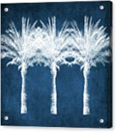 Indigo And White Palm Trees- Art By Linda Woods Acrylic Print