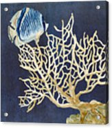 Indigo Ocean - Tan Fan Coral N Angelfish Acrylic Print