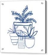 Indigo Potted Succulents- Art By Linda Woods Acrylic Print