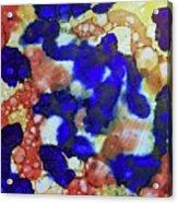 Indigo Slosh - V1lllt78 Acrylic Print