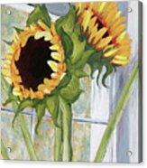 Indoor Sunflowers II Acrylic Print by Trina Teele