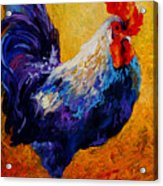 Indy - Rooster Acrylic Print