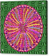 Infinity Star Flower An Abstract Fineart Expression By Navinjoshi At Fineartamerica Colorful Fun Acrylic Print