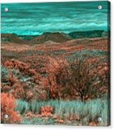 Infrared Arizona Acrylic Print