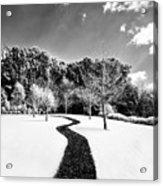 Infrared Parkland Acrylic Print