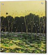 Inland Lakes Acrylic Print