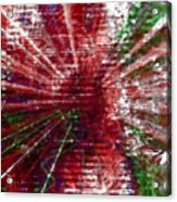 Inner Reaction To Your Voice Acrylic Print