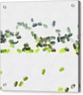 Insects Marching All Over Acrylic Print
