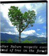 Inspirational-mother Nature Acrylic Print