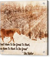 Inspirational Quote Horse Photo Acrylic Print