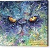 Intense Palette Knife  Persian Cat Acrylic Print