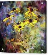 Intense Yellow 3227 Idp_2 Acrylic Print