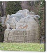 Interesting Rock Formation - Elephant Rocks Acrylic Print