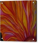 Internal Floral Acrylic Print