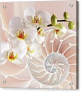 Intimate Fusion In Soft Pink Acrylic Print