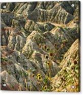 Into The Badlands South Dakota #3 Acrylic Print