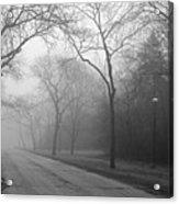 Into The Fog Acrylic Print by David April