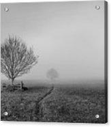 Into The Fog Acrylic Print