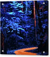 Into The Forest Of Night Acrylic Print