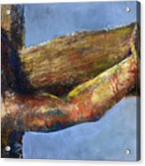 Into Your Hands Acrylic Print