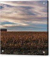 Iowa Corn Fields In The Fall Acrylic Print