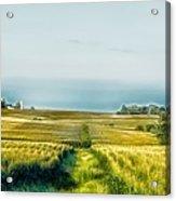 Iowa Cornfield Panorama Acrylic Print