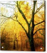 Ipswich 2 Acrylic Print