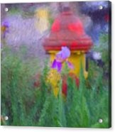 Iris And Fire Plug Acrylic Print