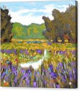 Iris By Creek Acrylic Print