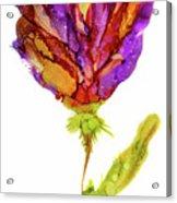 Iris Flower 2 Acrylic Print