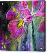 Iris In The Night Acrylic Print