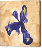 Iris Iv Pixie  Acrylic Print