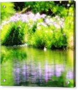 Iris' Reflection Acrylic Print