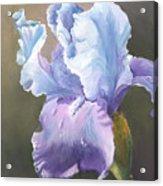 Iris Tears Acrylic Print