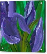 Iris Up Close And Personal Acrylic Print