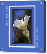 Iris White With Design Acrylic Print