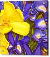 Iris Withtulip Acrylic Print