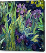 Irises At High Altitude Auribeau France 2004   Acrylic Print