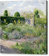 Irises In The Herb Garden Acrylic Print